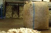 Wool bales and fleece in woolshed