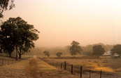Dust storm over paddocks on the outskirts of Adelaide, SA. 1... [ID:4343]