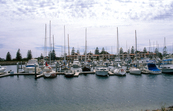 North Haven Marina, Adelaide, South Australia. 1995.