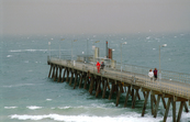 Fishermen brave the stormy conditions on the Glenelg Jetty o... [ID:4400]