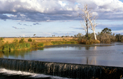 Weir on Barambah Creek near Murgon, S.E. Queensland. 1993.