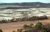 Valley of Salt. Salinity in the Western Australian wheatbelt near Bruce Rock, WA.