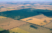 Aerial view of Lester State Forest and wheat farms near Cool... [ID:4703]