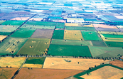 Aerial view of mixed crops at Coolamon, NSW. 1999. [ID:4704]