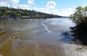 Tamar River, Launceston, Tasmania [ID:11371]