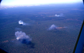 Aerial View of Experimental Fires [ID:500]