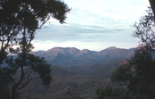 Warrumbungles at Dawn