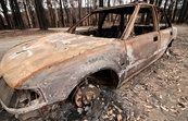 A burnt-out car at Kinglake after the 'Black Saturday' bushfires