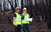 CSIRO researchers conducting bushfire research at Strathewen... [ID:10610]