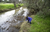 Dr Olga Barron collects a water sample from the Wungong River, Brookdale, Perth, WA