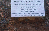 Walter Williams Grave