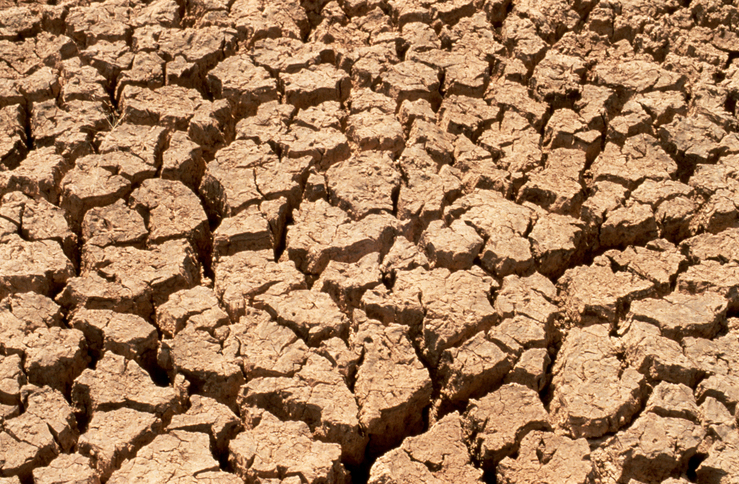 Effects of Drought on the Soil