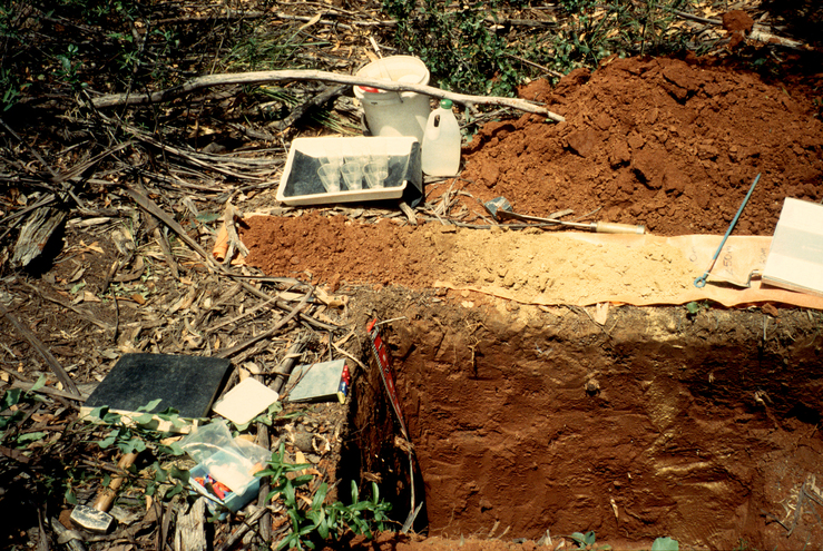 Excavated Soil Samples and Field Equipment