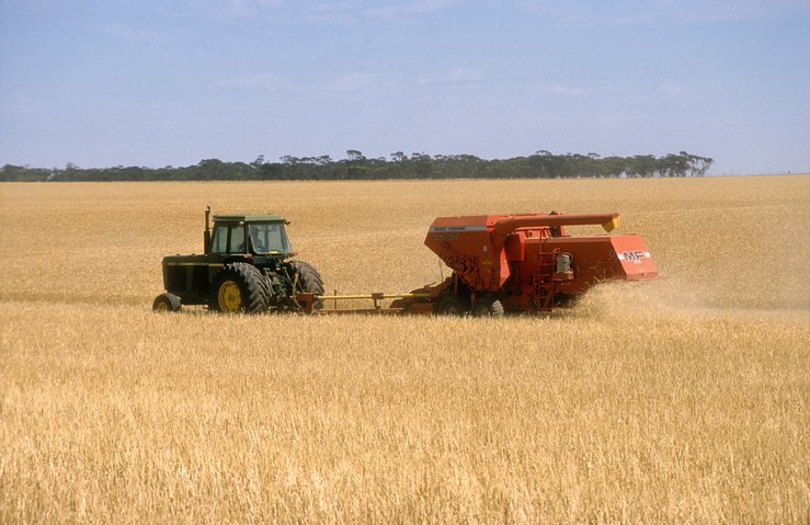 Harvesting wheat near Blyth in the mid north of South Austra...