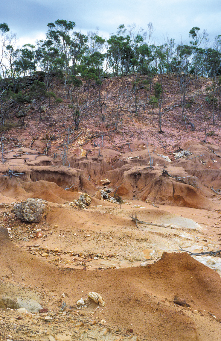Dryland salinity has induced serious hillslope gully and she...