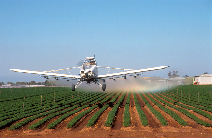 Aerial spraying, using fungicides/herbicides, of a carrot cr...