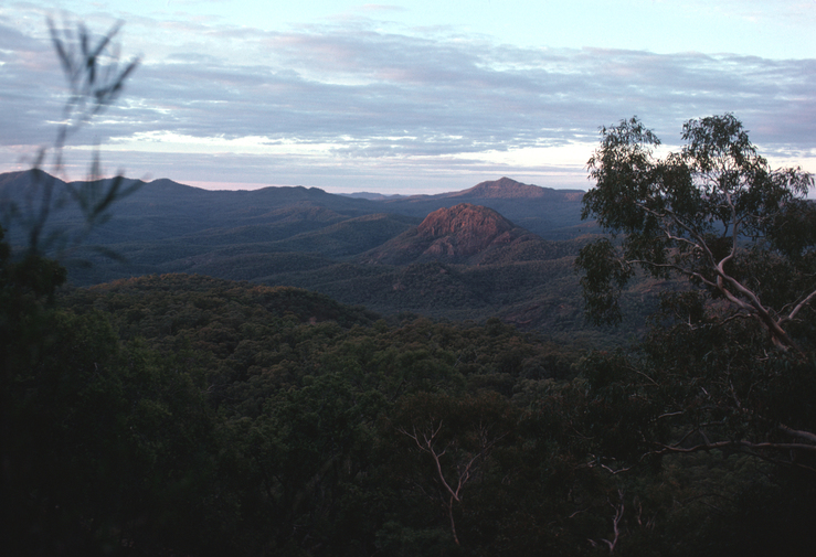 Dawn at the Warrumbungles