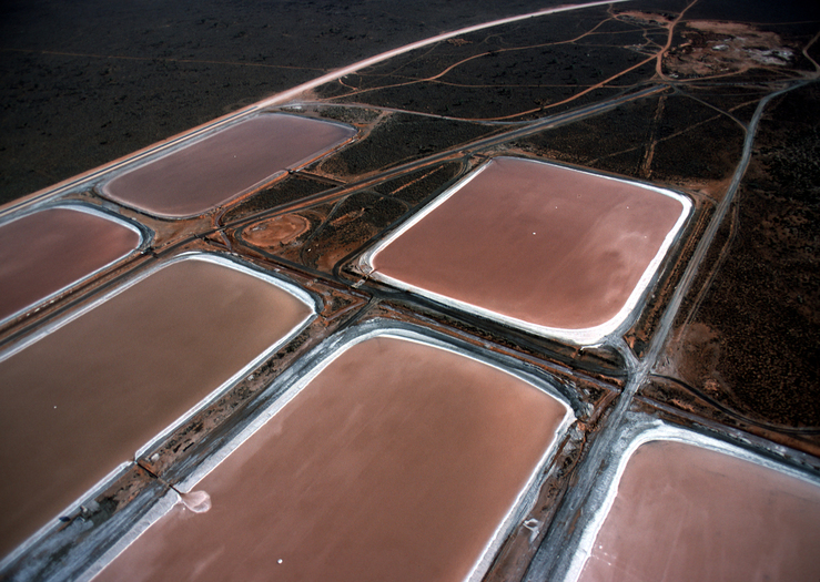 Aerial View of Algae farm.
