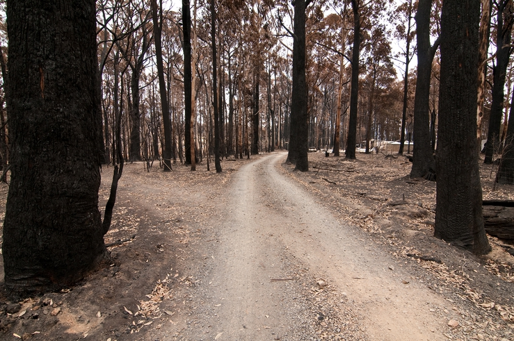 Private road leading to damaged property at Kinglake after t...