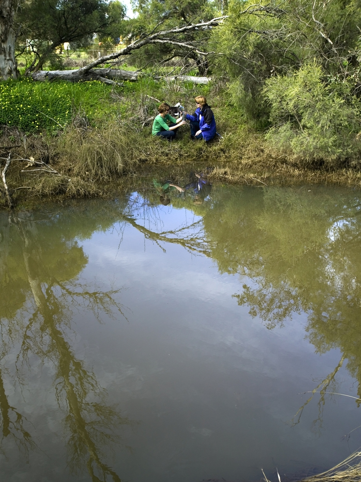 CSIRO scientists analyse a water sample from the Wungong Riv...