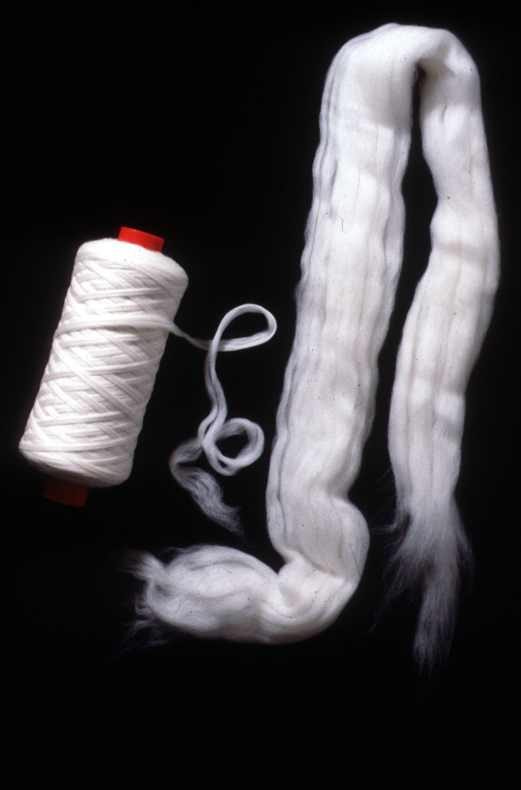 Wool Comb Sliver and Roving