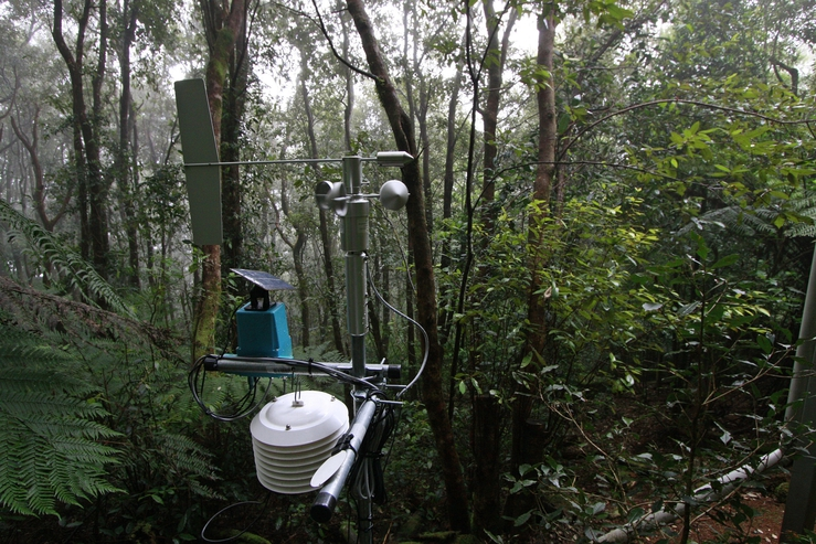 CSIRO sensors uncovering the microclimatic conditions favour...