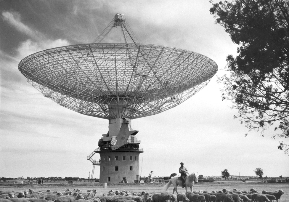 Austie Helm Mustering Sheep near the Parkes Radio Observator...