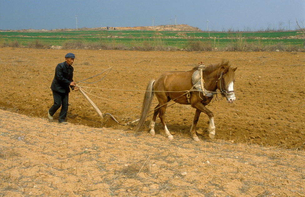 Farmer working land in northern China, 1991.