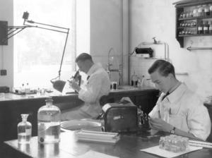 A Histo-pathology Preparation Room