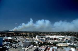 Distant Bushfires