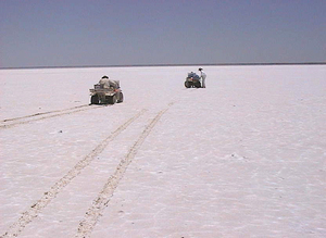 Lake Frome's surface covered in  tyre tracks