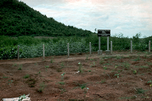 Australian Hardwood Trial Plantation, Thailand