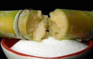 Sugarcane and bowl of sugar