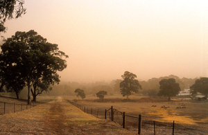 Dust storm over paddocks on the outskirts of Adelaide, SA. 1994.