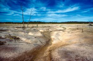 Saline area in the Western Australian wheat belt near Bannister, WA. 1981.
