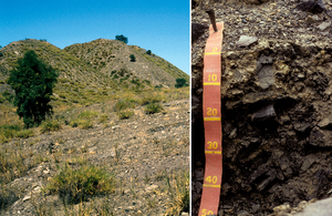 Rudosolic, Spolic, Anthroposol soil profile at the Saraji colliery in the Bowen Basin, Queensland