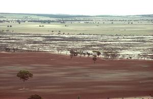 Salinity in the Western Australian wheatbelt near Bruce Rock, WA.