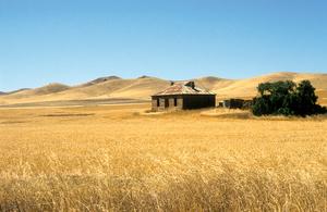Abandoned farmhouse near Burra in the mid-north of South Australia. 1992.