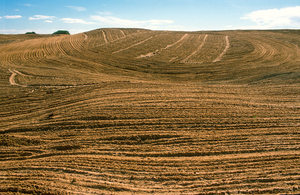 Area cleared of Mallee bushland on the Cooke Plains, south-east of Tailem Bend, SA. 1992.