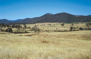 Farmland along Paddy's River Road, near Canberra. ACT.