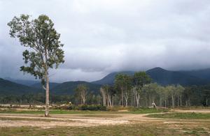 Earthworks at Port Hinchinbrook Resort near marina. Cardwell, QLD.