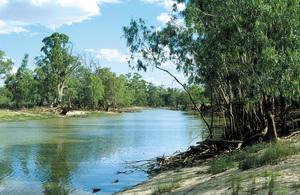 View of Punkah Creek, Chowilla. SA.