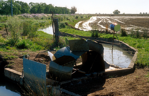 Waterwheel used for flood irrigation of rice at Griffith, NSW. 1989.