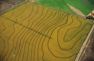 Aerial view of rice growing areas in the Murrumbidgee Irrigation Area, near Griffith. NSW