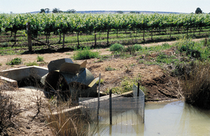 Dethridge wheel measuring irrigation water consumption by vineyard. Farmer has installed a mesh screen to filter foreign matter. Griffith, NSW.
