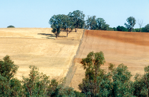 Boundary fence divides grazing and cultivate land near Young, NSW. 1991.