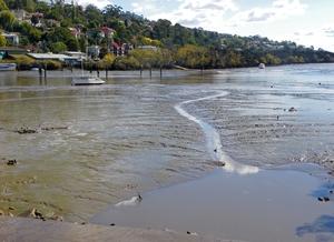 Tamar River, Launceston, Tasmania