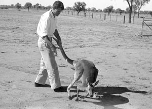 Alan Newsome with kangaroo