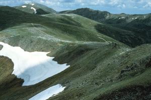 The Australian Alps in Summer