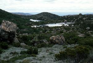 Tarn Shelf Mountain Lake